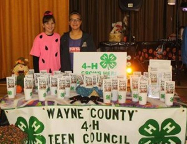 Wayne County 4-H Teen Council booth at Trunk-or-Treat.