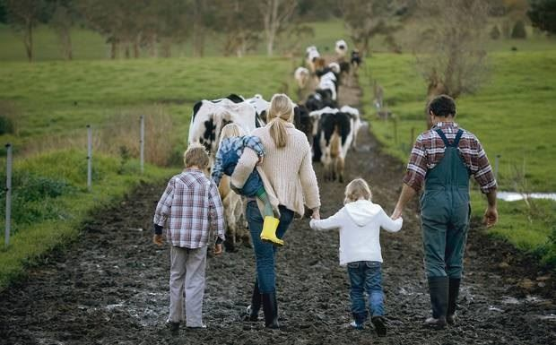 A man and a woman with a child in her arms and two others in tow follow a herd of cow down a mud tra