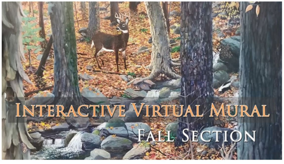 An image of the Fall Section of the Habitat Mural freaturing an autumn forest scene with a deer.