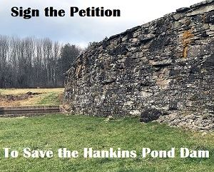 Image links to the online petition to Save the Hankins Pond Dam from demolition